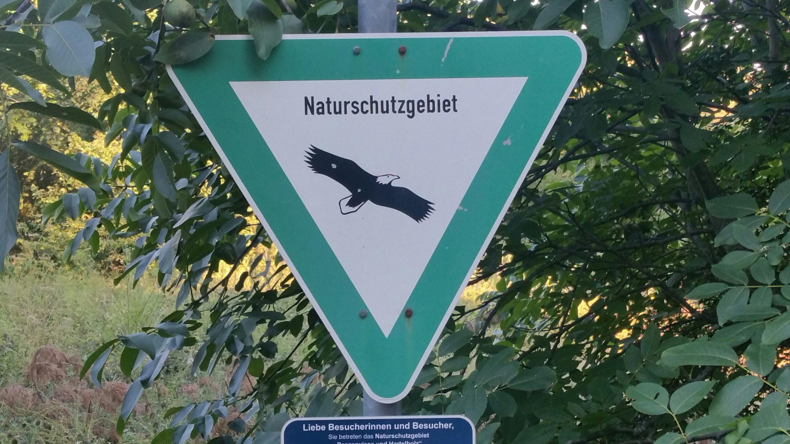 Naturschutzgebiete für Waldschutz?