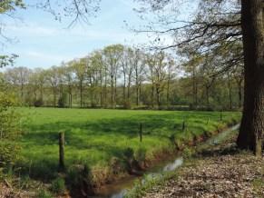 landgoed huize almelo (3)