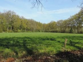 landgoed huize almelo (4)