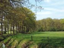 landgoed huize almelo (8)
