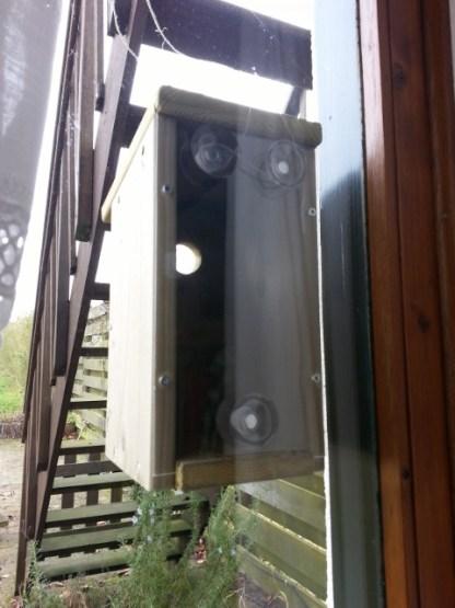 Raam-Nestkast van binnenuit