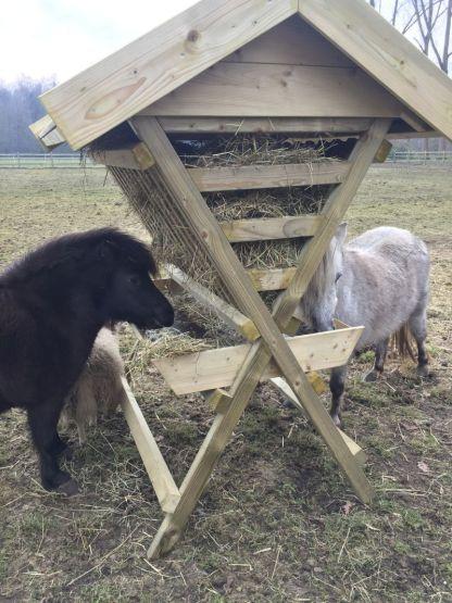 Hooiruif voor ponys met 2 hongerige gasten