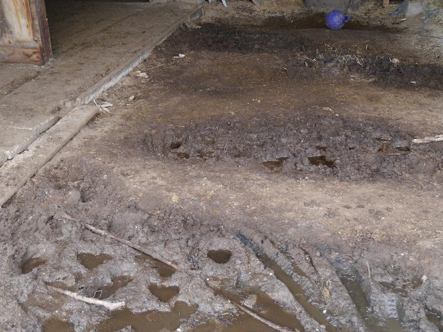 aanpak van modderige inloopstal met paddockplaten