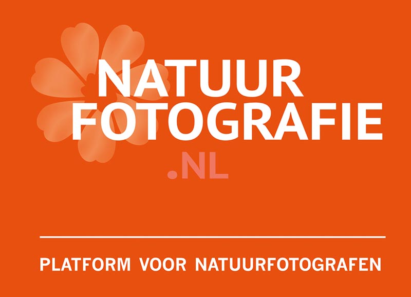 Redacteur bij natuurfotografie.nl