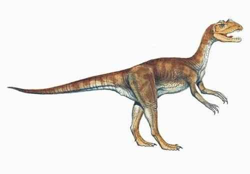 metode datiranja fosila dinosaura usklađivanje za sudbinu štrajka u tjednu