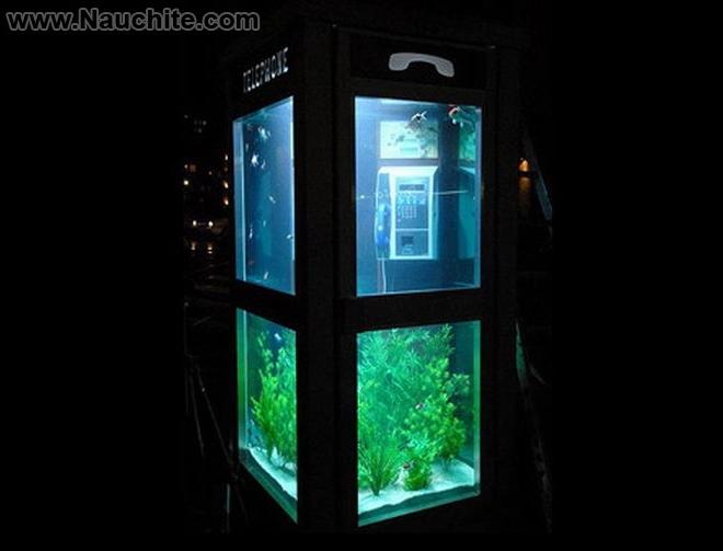 phone_booths_aquariums_b_03.jpg