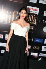 amyra dastur hot at iifa awards 2017 MGK_16410027