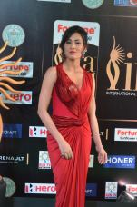 celebrities at iifa awards 2017 - 3DSC_18550906