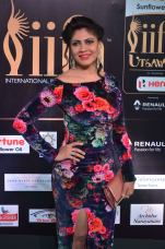 celebrities at iifa awards 2017DSC_01570043