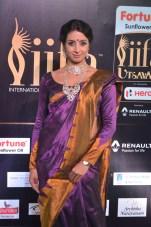 celebrities at iifa awards 2017DSC_0639