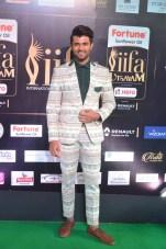 celebrities at iifa awards 2017DSC_0730