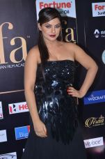 DSC_66360010neetu chandra at iifa awards 2017
