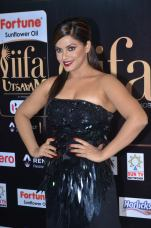 DSC_66520026neetu chandra at iifa awards 2017