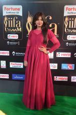 monal gajjar hot at iifa awards 2017DSC_83240021