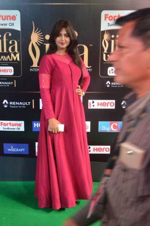 monal gajjar hot at iifa awards 2017DSC_83420039