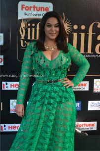 mumaith khan hot at iifa awards 2017 DSC_16200674_wm