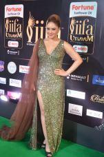 nikesha patel hot at iifa awards 20173