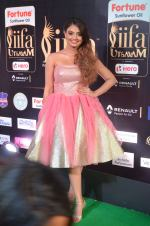 nikita narayan hot at iifa 20175
