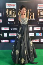 pragya jaiswal hot at iifa awards 2017DSC_91860098