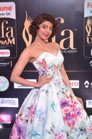 pranitha subhash hot at iifa awards 2017HAR_2533