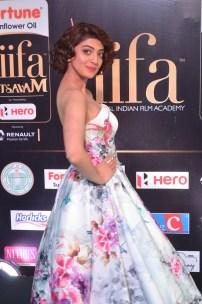 pranitha subhash hot at iifa awards 2017HAR_2622