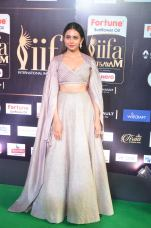 rakul preet singjh hot at iifa awards 2017DSC_90360002