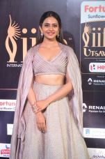 rakul preet singjh hot at iifa awards 2017DSC_90640030