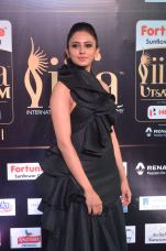 rakulpreetsingh hot at iifa awards 2017DSC_24630078