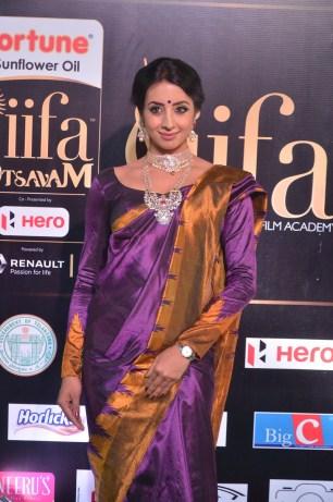 sanjjana hot in saree at iifa awards 2017 DSC_0606