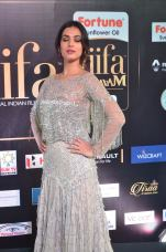 sonal chauhan hot at iifa awards 201715