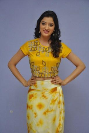 telugu actress richa panaiRicha Panai (33)