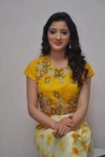 telugu actress richa panaiRicha Panai (40)