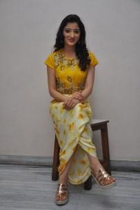 telugu actress richa panaiRicha Panai (47)