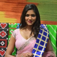shalu chourasiya hot photoshoot in pink saree