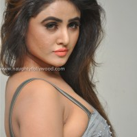 sony charistha uncut hot photoshoot in saree