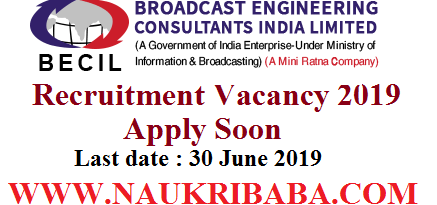 becil recruitment vacancy 2019-apply soon