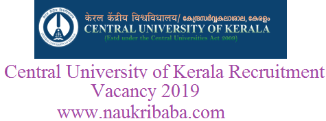 central university recruitment vacancy 2019