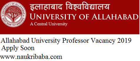 professor vacancy 2019 apply online