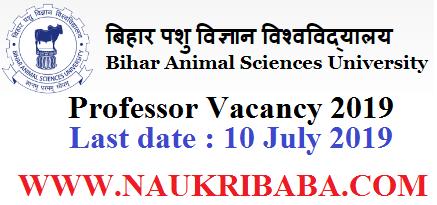 bihar animal sciences university professor recruitment-vacancy-2019-apply-soon