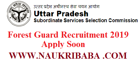 forest guard wild forest guard vacancy uttarpradesh naukribaba