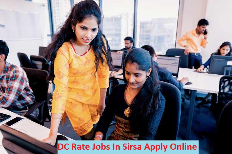 DC Rate Job In Sirsa