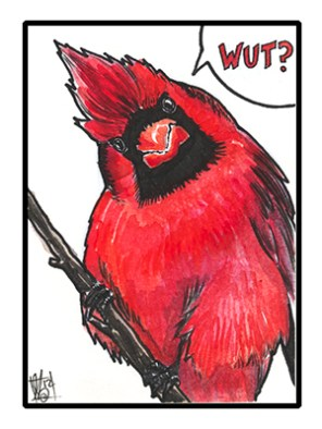 Cardinal_original