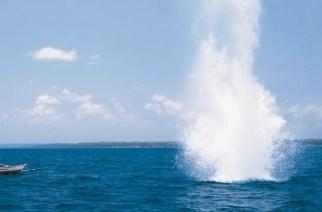 La pesca con bombas acaba con la vida marina en Nicaragua