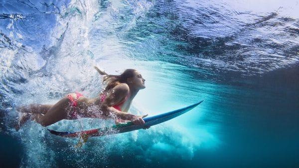 el surf, bacterias