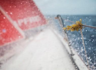 Volvo Ocean Race La implacable maleza marina del Atlántico Norte