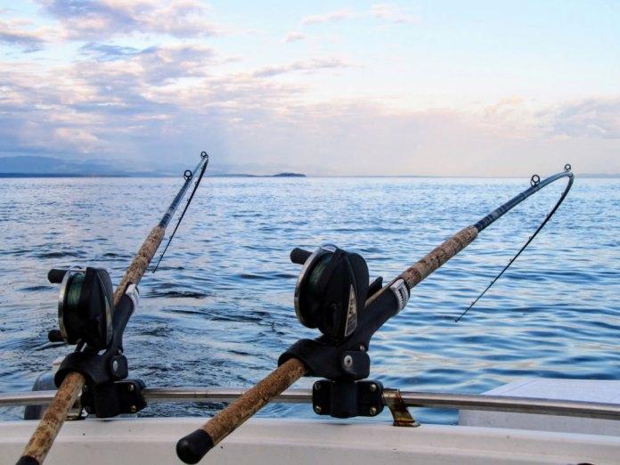 Cuarentena Y Pesca