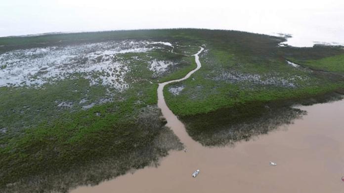 """Nuevas islas de San Isidro declaradas """"reserva natural"""""""