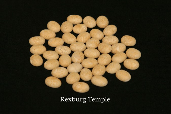 Temple stones from the LDS Rexburg Temple by Nauvoo Remembered jewelry
