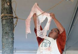 Navajo Times | Ravonelle Yazzie Miss Navajo contestant Kayla Martinez hangs the ak'ah on the rope to dry during the butchering on Monday in Window Rock.