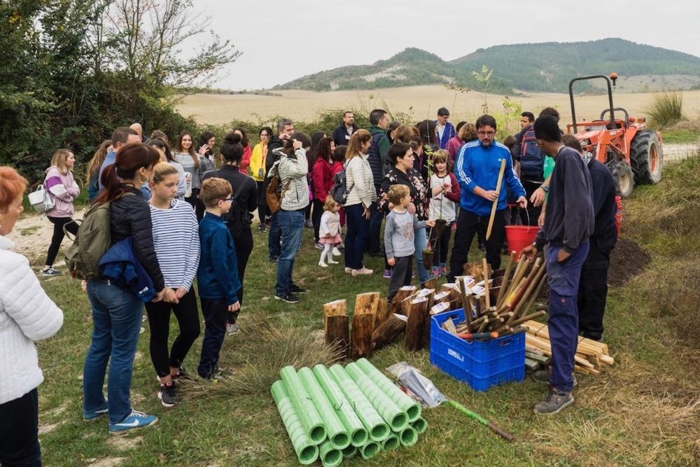 Reduce-Reforestacion-Monte-02
